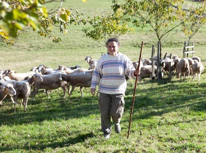 Recherche agricultrice celibataire