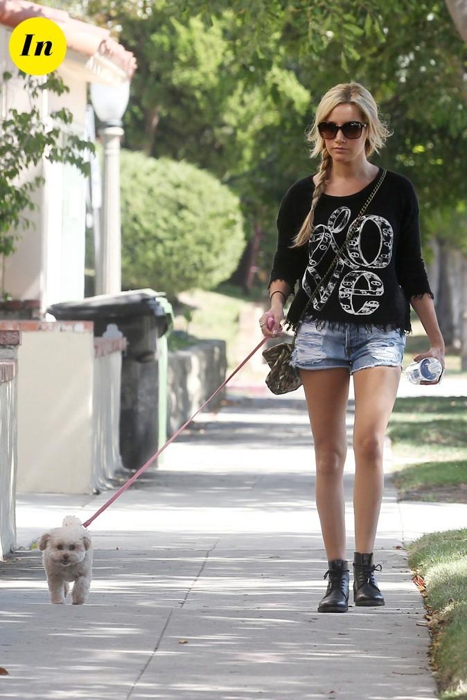 Petite promenade avec son chien !