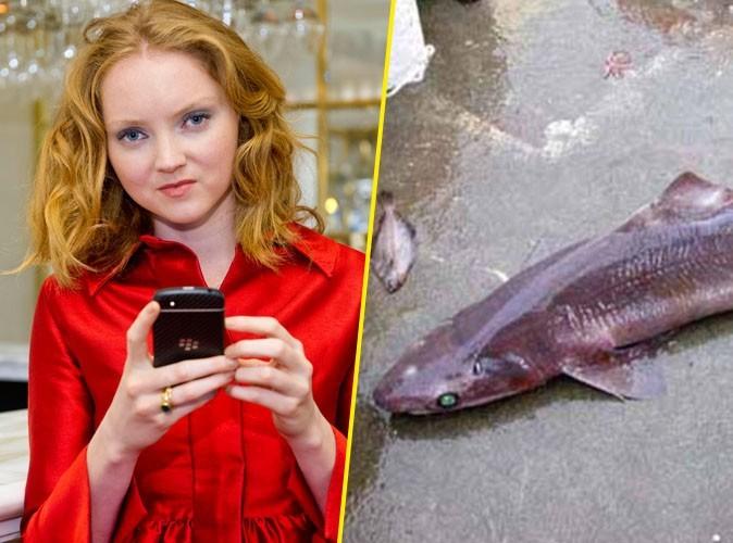Beauté : Lily Cole révèle et condamne l'utilisation de foies de requins dans l'industrie cosmétique !