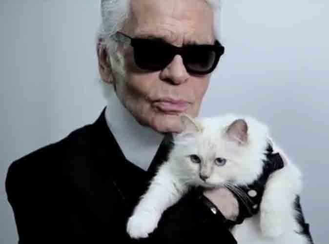 Mode : Choupette, le chat de Karl Lagerfeld, une égérie de choix !