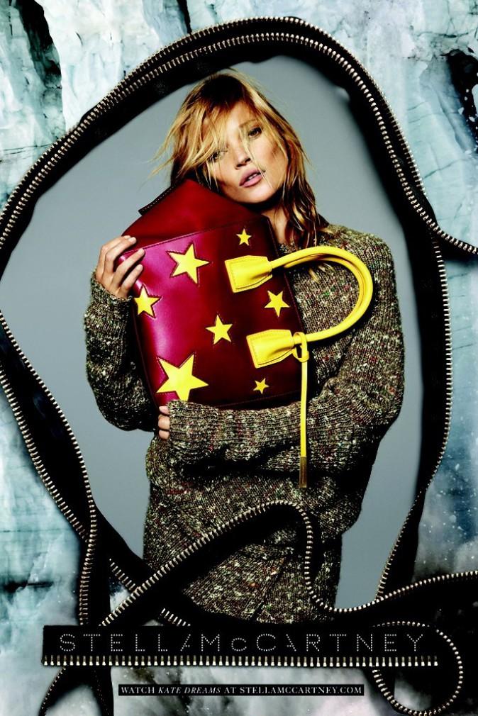 Mode : Kate Moss pose une septième fois pour Stella McCartney !