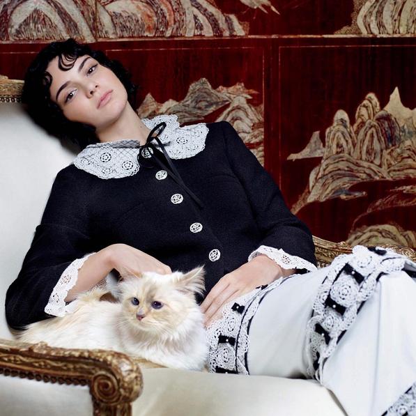 Kendall Jenner et Choupette, le chat de Karl Lagerfeld