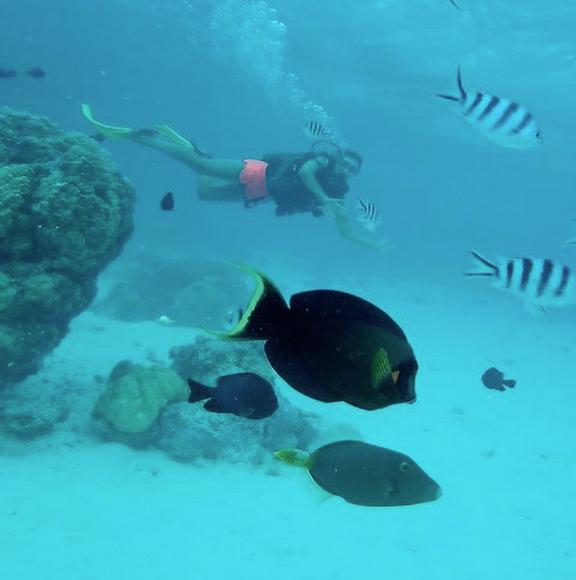 Photos : Marine Lorphelin : pause sexy avec son chéri à Tahiti !