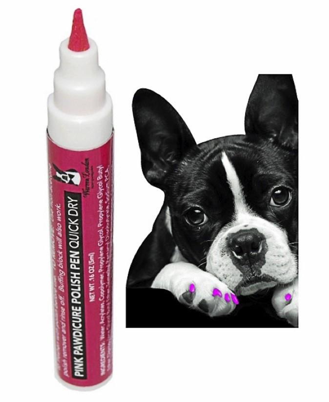Des nouveautés pour chouchouter nos chiens sur lapetavenue.com !
