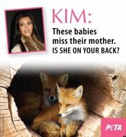 PETA-SLAMS-KIM-KARDASHIAN