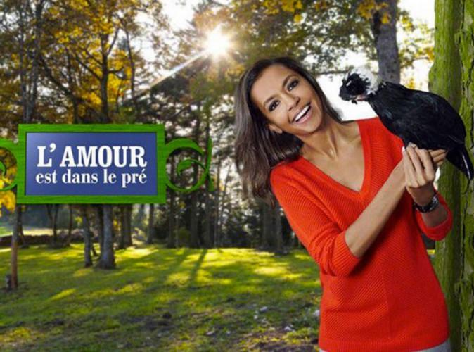 """Audiences télé : TF1 largué par """"L'Amour est dans le pré"""" (M6) et """"Catsle"""" (France 2) !"""