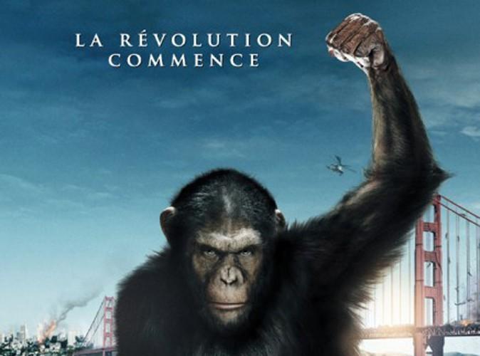 Box Office France : La Planète des Singes ne cède pas une liane !