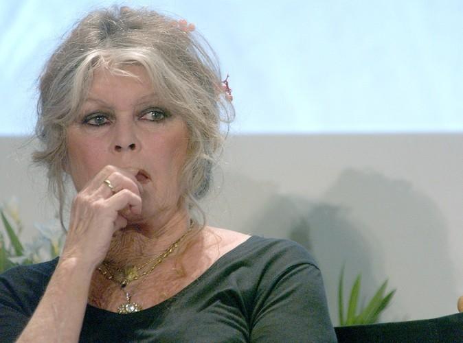 """Brigitte Bardot crie son ras le bol : """"je ne supporte plus la France !"""""""