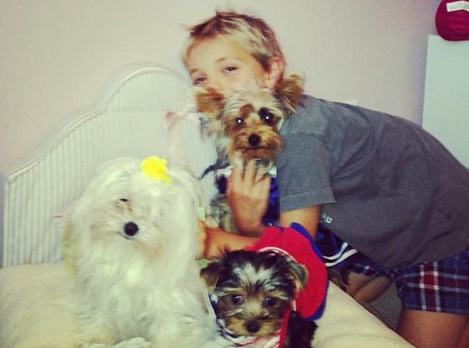 Britney Spears : sa chienne fête son anniversaire sur Twitter !