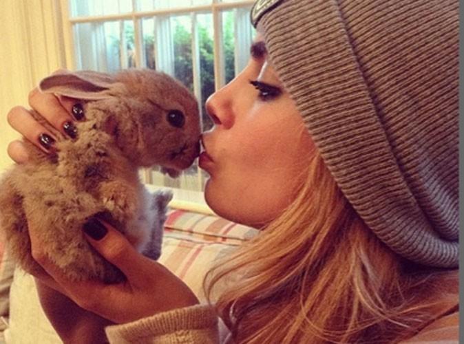 Cara Delevingne : elle cherche une nounou pour son petit lapin !
