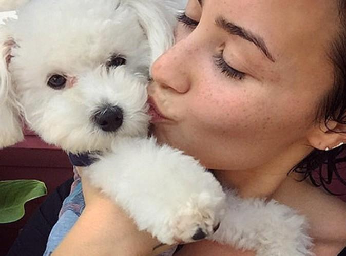 Demi Lovato : fin tragique pour son adorable chien... Les circonstances de sa mort révélées