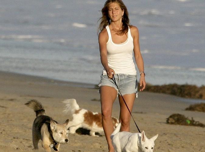 Jennifer Aniston : son chien Norman est mort !