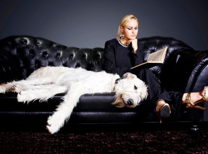 """Le saviez-vous : M6 préparerait la nouvelle émission """"On a échangé nos chiens"""" !"""