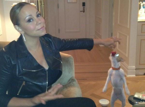 Mariah Carey : son chien adore les fraises !
