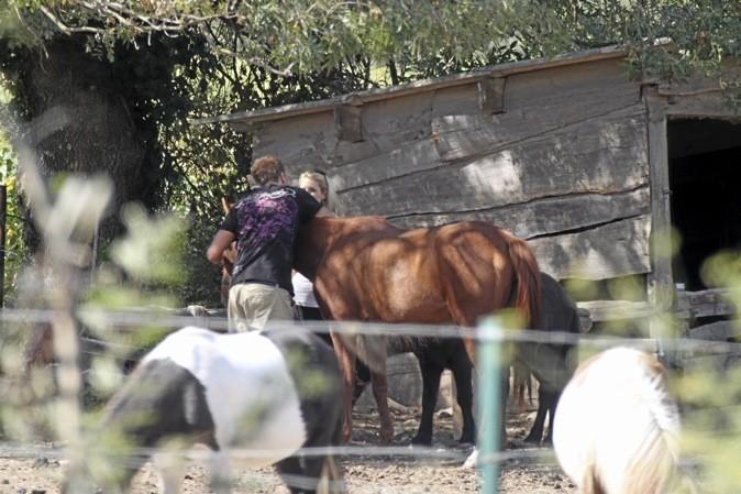 Trop fort le Benji, il fait semblant de caresser la jument et il embrasse la cavalière.... !