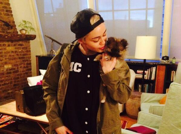 Miley Cyrus se sépare déjà de son nouveau chien...