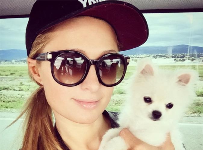 Paris Hilton : sérieusement menacée de mort par un antisémite !