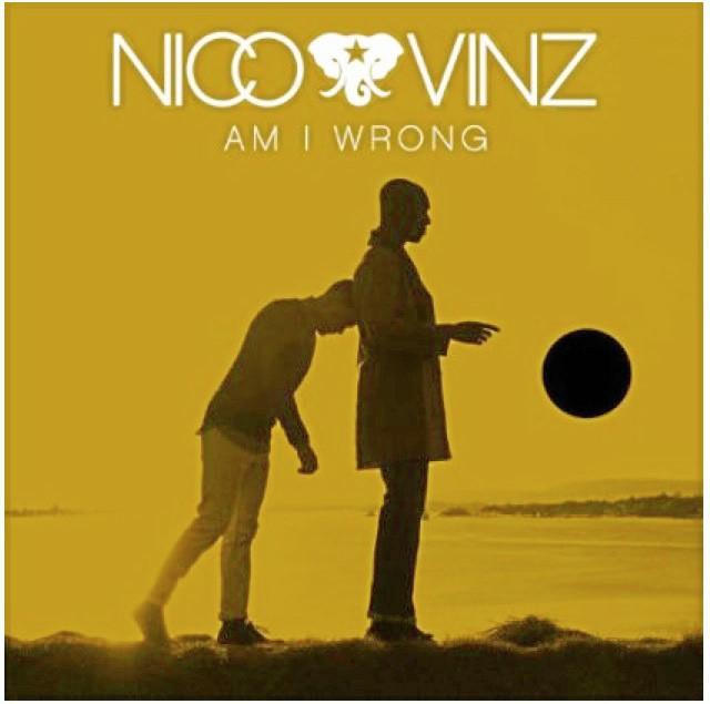 AmIWrong de Nico&Vinz
