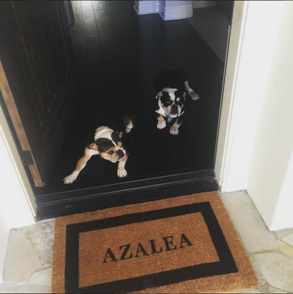 Propriété d'Iggy Azalea dans le quartier de The Oaks