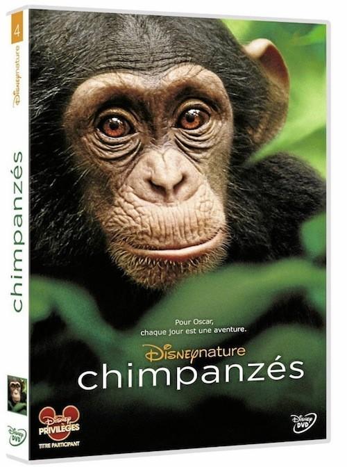 Un DVD pour toute la famille