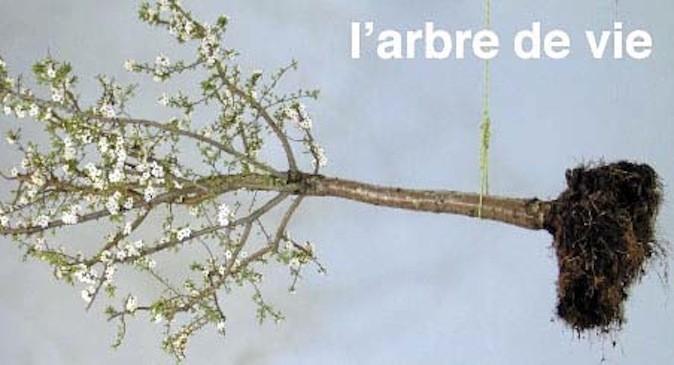 L'arbre de vie, au collège des Bernardins, 20, rue de Poissy Paris 5e. Gratuit.