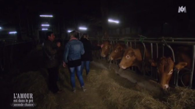 Philippe l'Auvergnat emmène Muriel et Sabine voir ses vaches