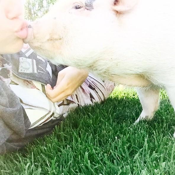L'amie des animaux