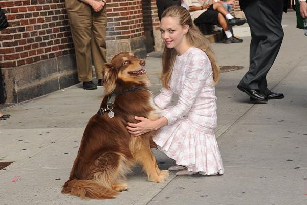 Amanda Seyfried en promo pour son nouveau film Lovelace à New York, le 30 juillet 2013.