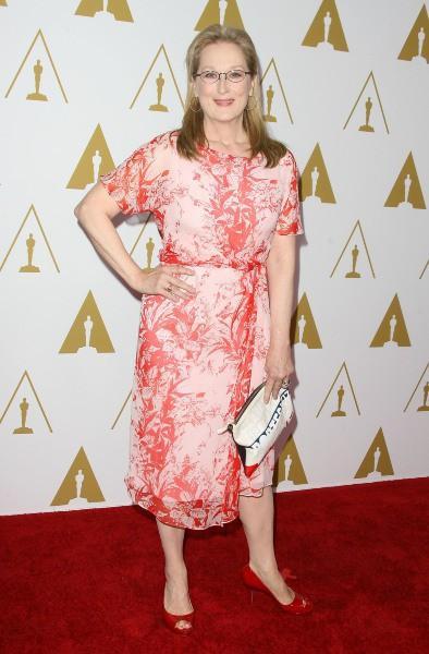 Meryl Streep lors du déjeuner des nommés aux Oscars, le 10 février 2014.
