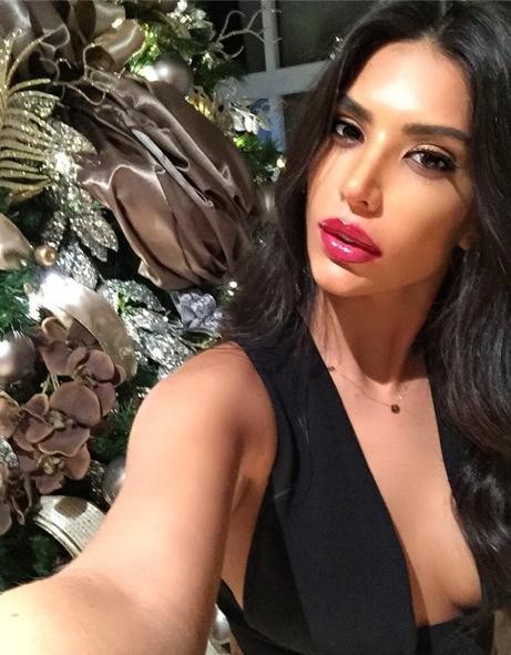 Photos : Anara Atanes : ultra décolletée pour Noël, Samir Nasri gâté !