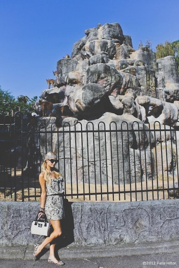 Paris se la joue incognito en imprimé sauvage, au zoo