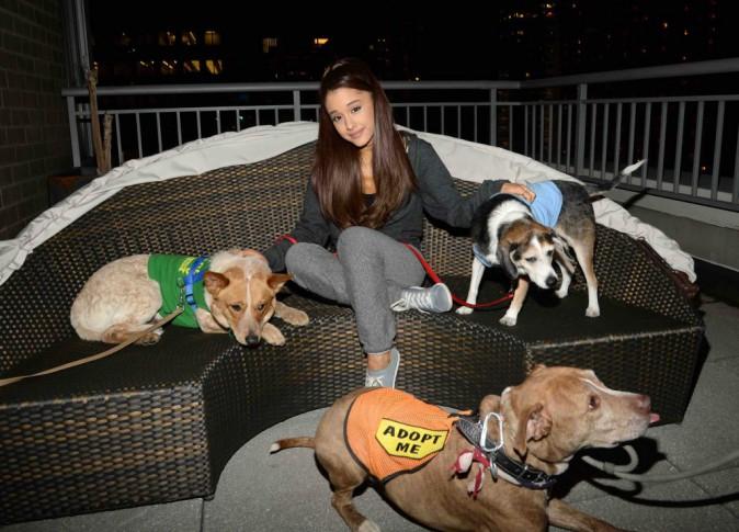 Ariana Grande : les chiens et elle, c'est une grande histoire d'amour !