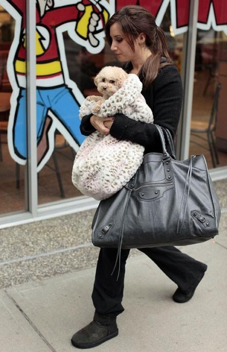 Son chien est plus couvert qu'elle !