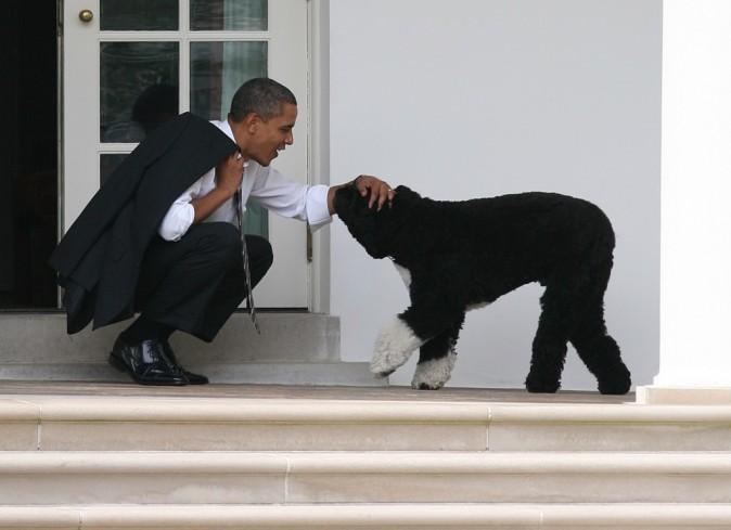 Barack Obama et son chien Bo
