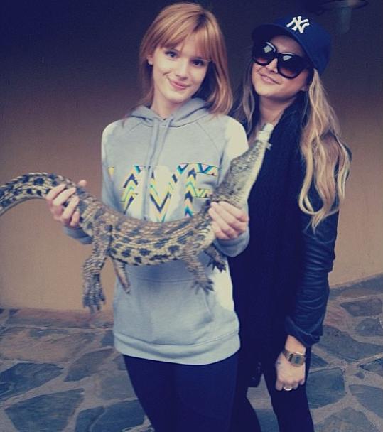 Bella Thorne préfère les vrais animaux aux peluches !