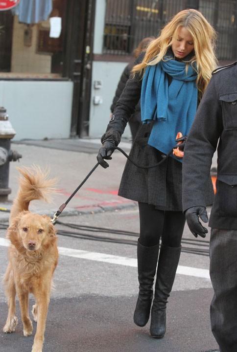 ...il y a Baxter, le chien de l'acteur !