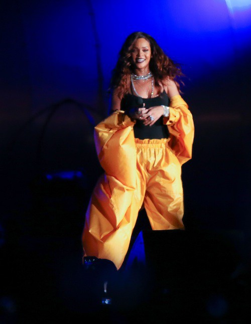Photos : Cara Delevingne vole le show de Rihanna !