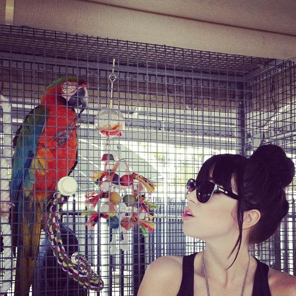 Photos : Carly Rae Jepsen : en harmonie totale avec les animaux !