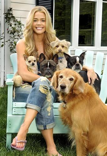 Denise et sa grande famille de chiens !