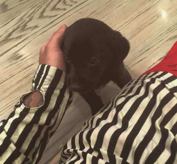 Photos : Justin Bieber présente son nouveau bébé !