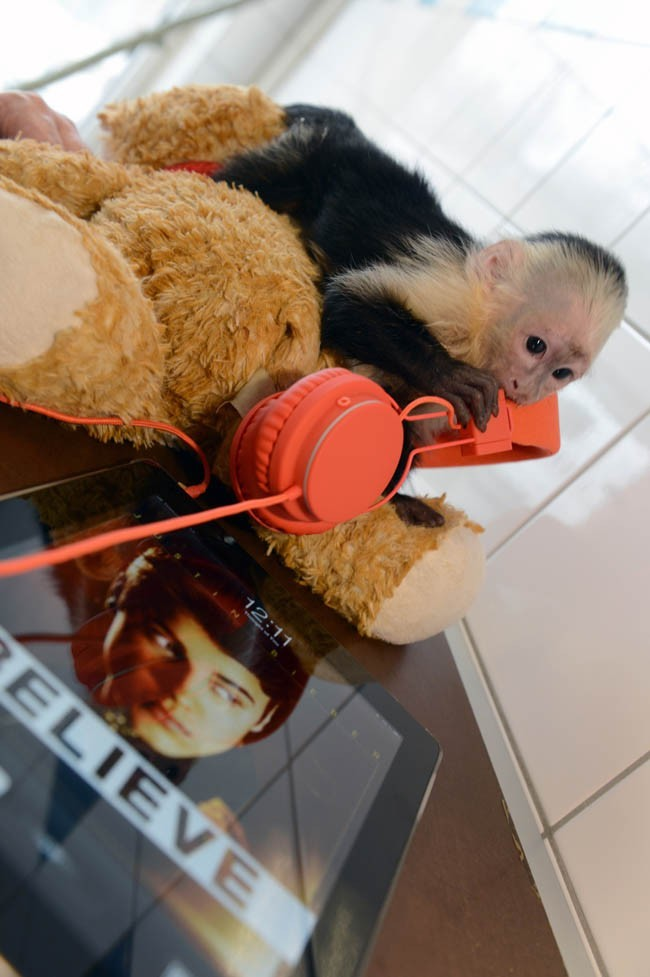 Mally dans son foyer de Munich le 2 avril 2013