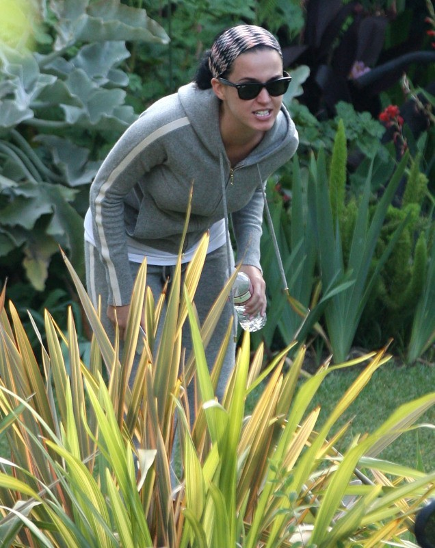 Katy Perry tente de se planquer dans un buisson !