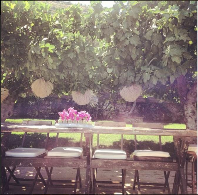 Petit-déjeuner sous les figuiers #Bliss