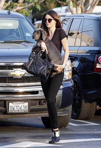Kendall Jenner à Los Angeles le 23 octobre 2013