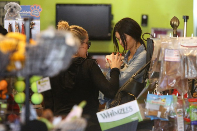 Kendall Jenner et Khloe Kardashian le 14 juin 2015