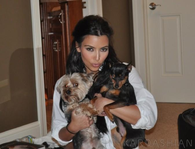 La brunette pose avec les chiens de son mari !
