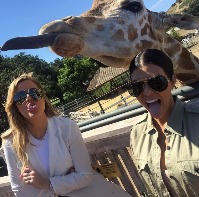 Kourtney et Khloe Kardashian en safari