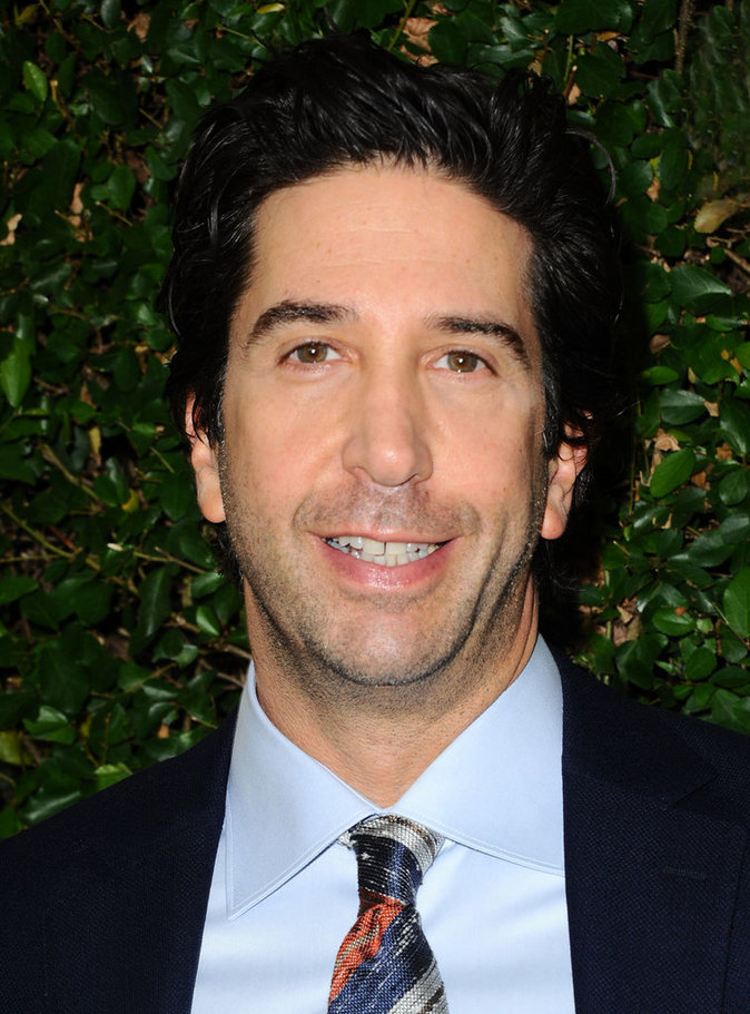 David Schwimmer (Ross Geller)