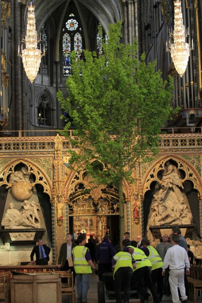 Début des décorations dans l'Abbaye de Westminster, le 26 avril 2011 à Londres.