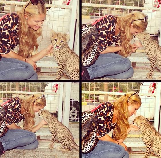 Paris et Cheetah !